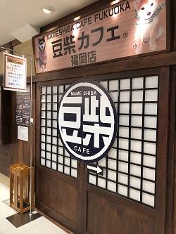豆柴カフェ1.jpg