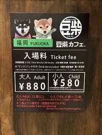 豆柴カフェ2.jpg